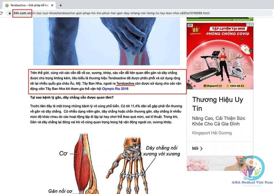 Báo 24h đã có bài viết về sản phẩm Tendoactive