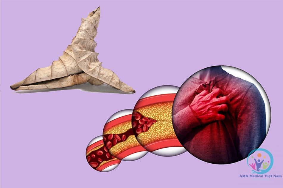 Lá sen khô có tác dụng hạ mỡ máu