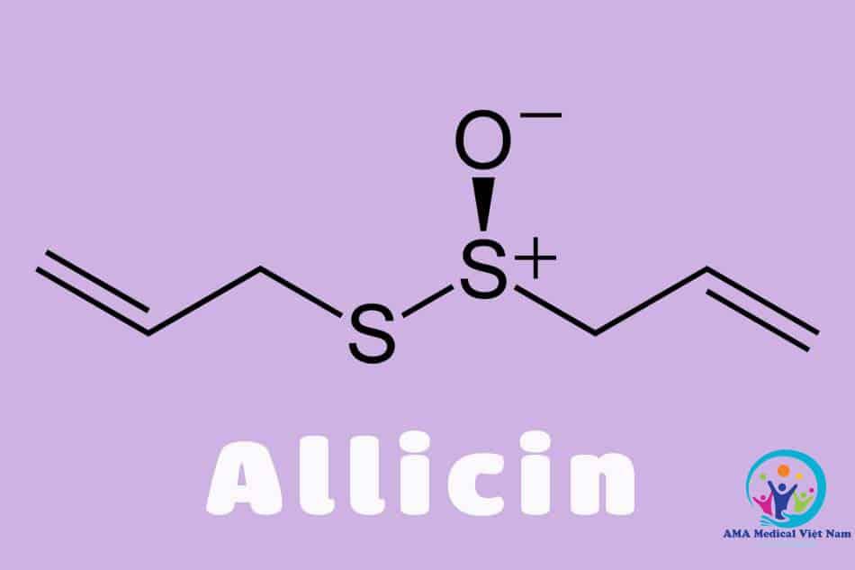 Hoạt chất Allicin