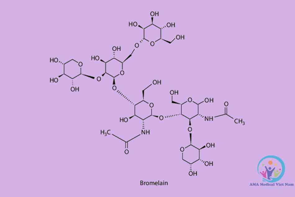 Cấu trúc phân tử Bromelain